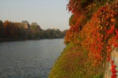 Река По в осени в Турине Италии Стоковое фото RF