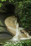 Река полесья Стоковое Изображение
