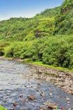 Река природы и горы Tahiti.Tropical. стоковая фотография