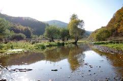 Река природы стоковая фотография