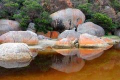 река приливное Стоковое Изображение RF