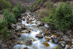 Река пропускает в долине Стоковое Изображение RF