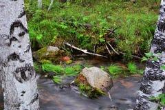 Река пропускает среди камней расплывчатая вода Стоковое фото RF