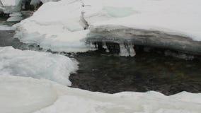 Река пропускает через лед и снег зимы Чистая вода, камни на дне видеоматериал