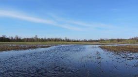 Река пропускает через долину и лес, ветер создает пульсации на воде сток-видео