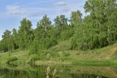 Река пропуская около горы стоковая фотография rf