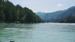 Река против фона гор и лесов акции видеоматериалы