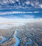 Река пущи в дне зимы Стоковая Фотография RF