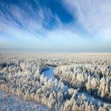 Река пущи в дне зимы Стоковое Изображение RF