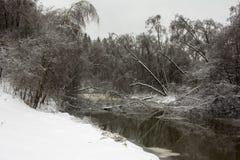 река пущи снежное Стоковые Фото