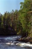 река пущи footbridge Стоковое Изображение RF