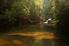 река рассвета chattooga Стоковое Фото