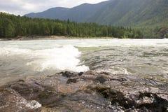 река Россия Сибирь зоны katun altai также Стоковые Изображения