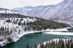 река Россия Сибирь зоны katun altai Стоковое Изображение RF