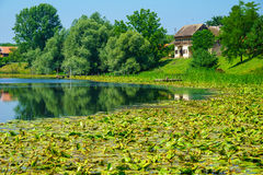 Река Сава, Хорватия Стоковые Фото