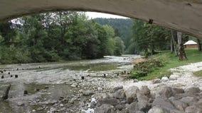 Река Сава, bohinj, slovenie 100502 сток-видео