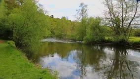 Река Сарта акции видеоматериалы