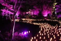 Река свечи пропуская через парк Канберры Стоковое Изображение
