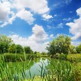 река сельской местности Стоковые Изображения RF