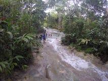 Река серовато-коричневых цветов Стоковые Изображения