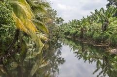 Река сельской местности Стоковые Изображения