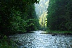 река Словакия 2 каньонов Стоковые Фотографии RF