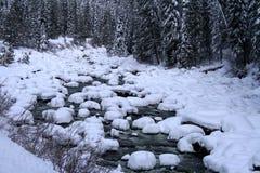 река снежное Стоковая Фотография