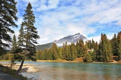 река сосенок гор горы banff Стоковые Фотографии RF
