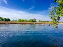 река солнечное Стоковая Фотография RF