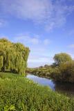 река спокойное Стоковое Фото