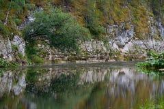 Река среди утесов Стоковые Фото
