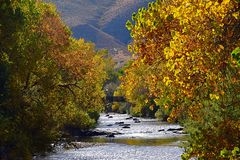 река США Аризоны colorado horseshoe Стоковая Фотография RF
