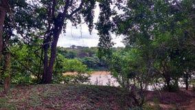 Река с валами Стоковая Фотография
