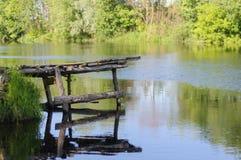 Река с деревянной пристанью в лете стоковое изображение rf
