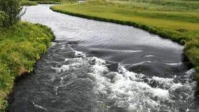 Река с очень зеленой вегетацией акции видеоматериалы