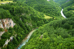 Река Тары в Черногории, взгляде от верхней части Стоковое Фото
