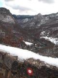 Река Тары стоковое фото rf