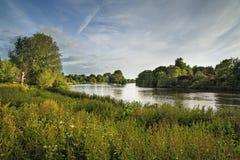 Река Темза от холма Ричмонда в Лондоне на летний день Стоковая Фотография RF