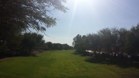 Река травы стоковое изображение rf