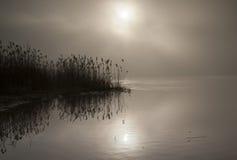 река утра рыболовства рассвета Стоковые Изображения RF