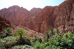 Река ущелий Todra в Марокко Стоковое Фото