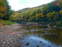 Река фанфаров с листопадом Стоковая Фотография