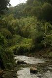 Река через гористые местности Фиджи Стоковое Изображение