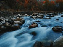 Река через листопад стоковое фото