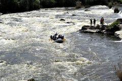 река черепашки южное прогулка весны пущи дня слободская Стоковые Фотографии RF