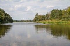 Река черепашки Стоковые Фотографии RF