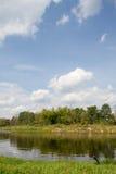 Река черепашки Стоковое Изображение RF