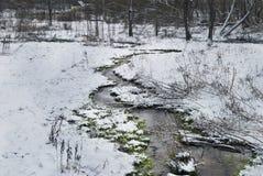Река чуда на солнечном свете в утре Драматическая зимняя сцена Стоковая Фотография