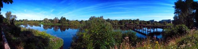 Река Шеннон Лимерик Ирландия Стоковое Изображение