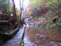 Река Япония горы Стоковые Изображения